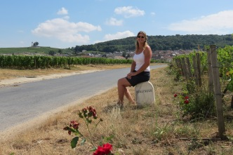 20180720 - among the Champagne Vineyards 12