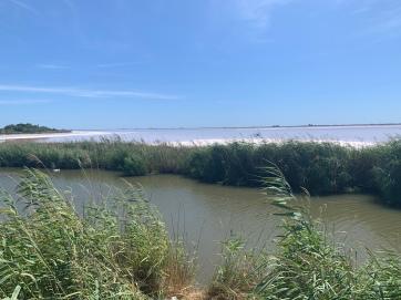 20190816 01 Aigues Mortes salt lake