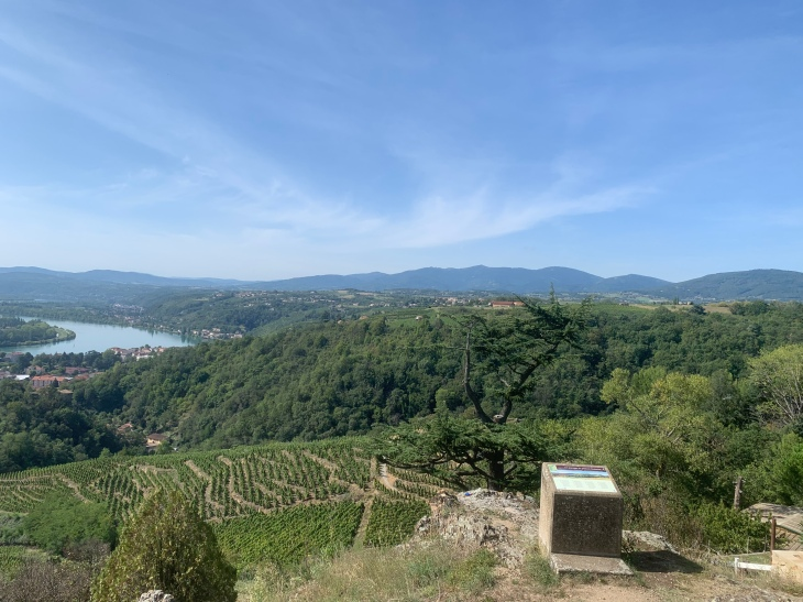 20190914 05 The Rhone from Condrieu