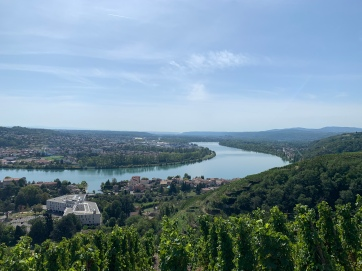20190914 08 The Rhone from Condrieu
