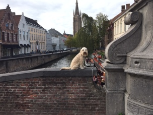 20200902 01 Brugge